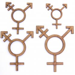 Transgender Symbol Craft Shape